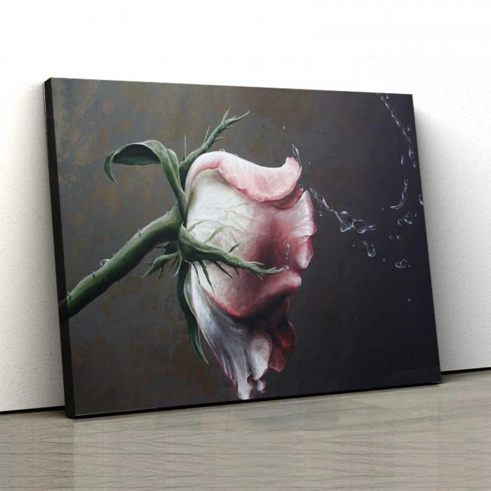 Tablou Canvas - Trandafir 0
