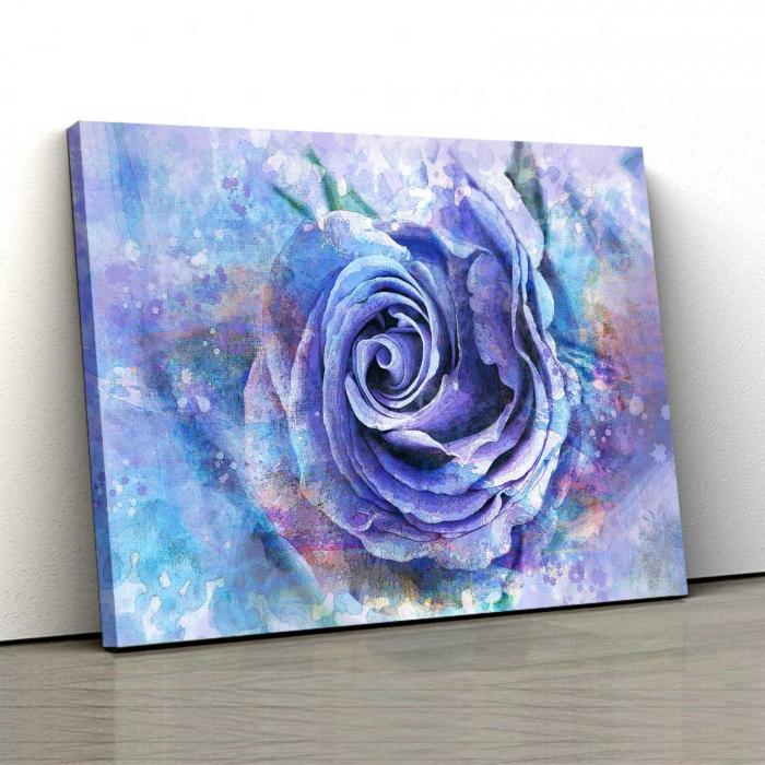 Tablou Canvas - Trandafir Mov 0