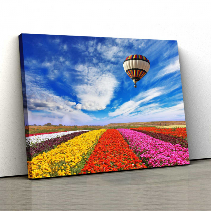 Tablou Canvas - Tulips Field [0]