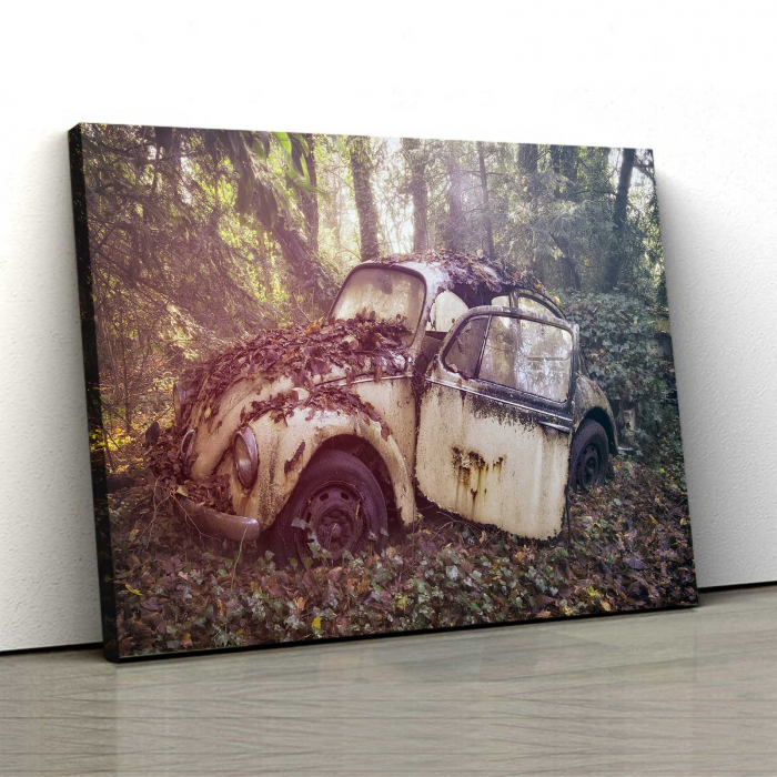 Tablou Canvas - Vintage Beetle 0