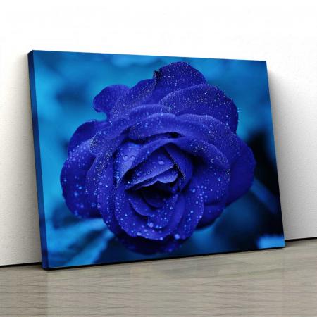 Tablou Canvas - Blue Rose [0]