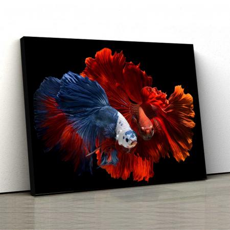 Tablou Canvas - Colorful Fish0