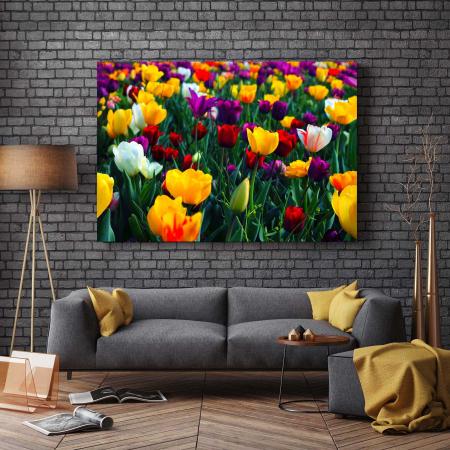 Tablou Canvas - Colorful Tulips [2]