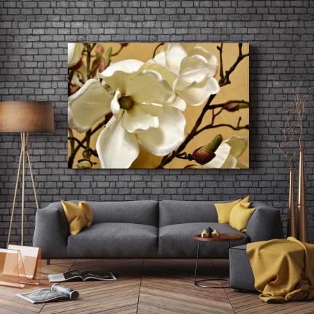 Tablou Canvas - Floare Alba [2]