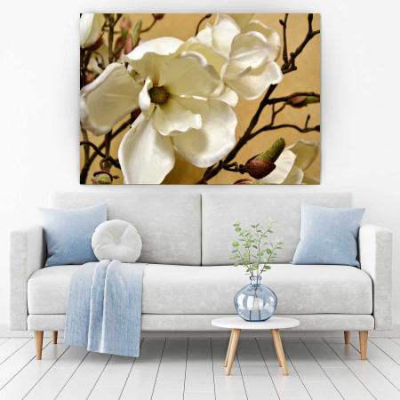 Tablou Canvas - Floare Alba [1]