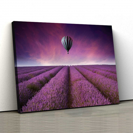 Tablou Canvas - Lavanda0