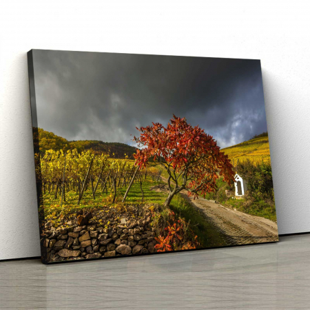 Tablou Canvas - Minunata Natura [0]