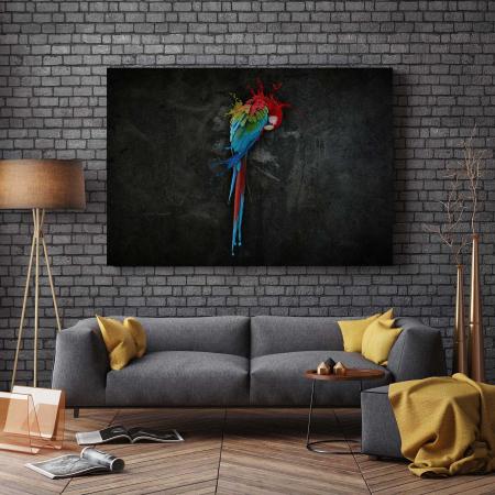Tablou Canvas - Parrot [2]