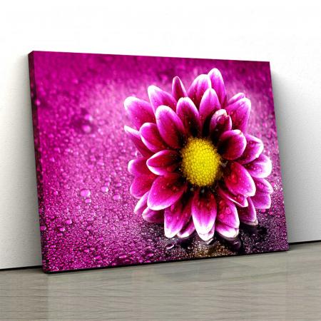 Tablou Canvas - Purlple Flower [0]