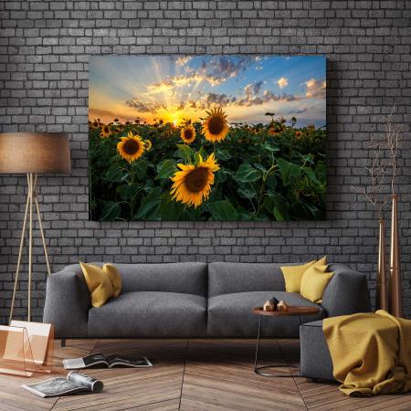 Tablou Canvas - Sunflower Field2