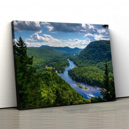 Tablou Canvas - Forest0