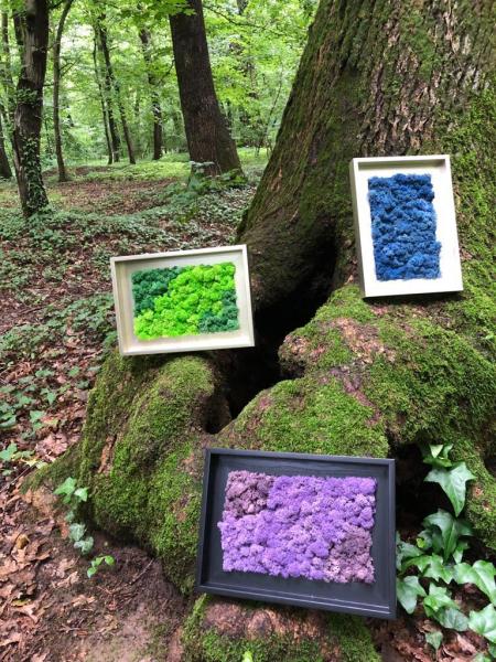 Tablou cu licheni naturali- Classic Garden 23x32 cm [0]