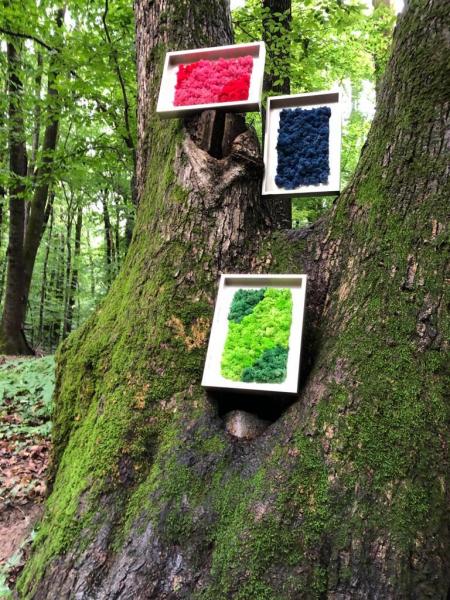 Tablou cu licheni naturali- Classic Garden 23x32 cm [1]