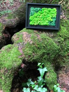 Tablou cu licheni naturali- Classic Garden 23x32 cm [2]
