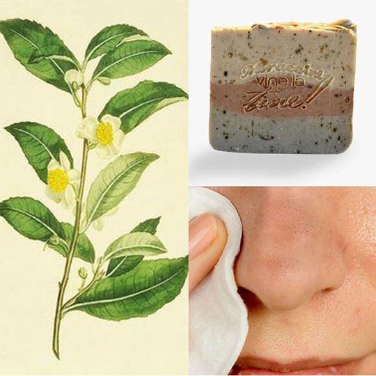 Sapun natural pentru ten acneic si incarcat 1