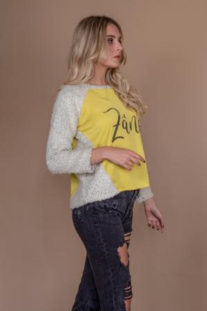 Bluza raglan oversize cu maneci lungi si imprimeu Zana2
