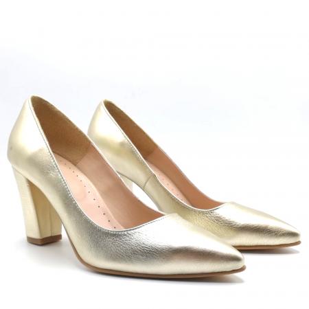 Pantofi din piele cu toc gros Gold Star1