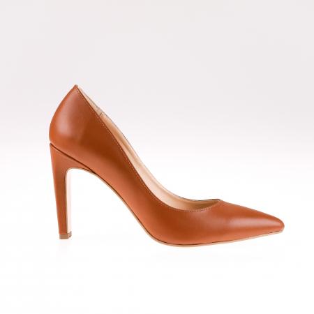 Pantofi stiletto din piele naturala Brown Box0