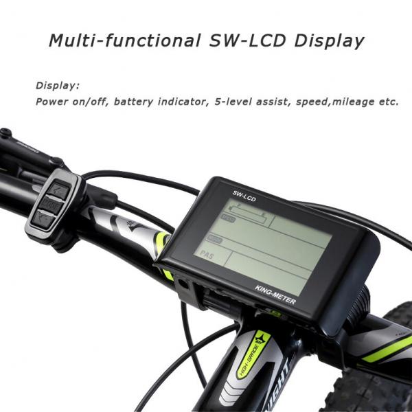 Bicicleta electrica SAVA (cadru carbon) 2