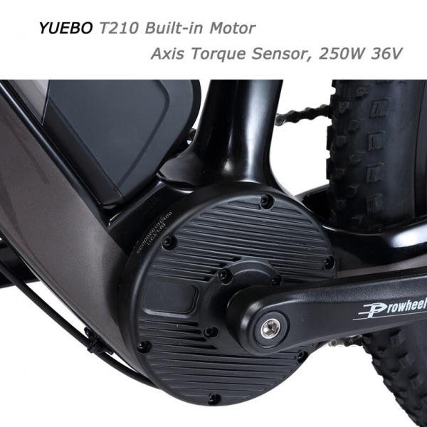 Bicicleta electrica SAVA (cadru carbon) 3