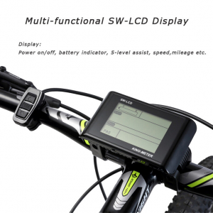 Bicicleta electrica SAVA (cadru carbon)2