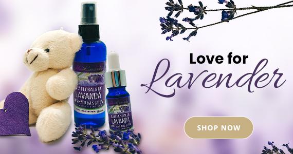 love for lavander