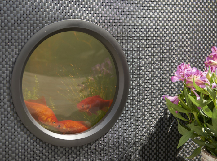 Aquarium - acvariu de exterior [3]