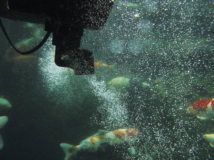 Skimmer plutitor SwimSkim 50 9
