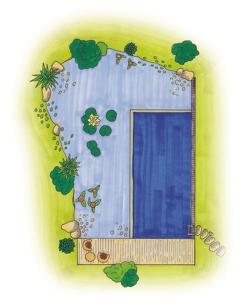 SwimPond OASE - Personalizat 4
