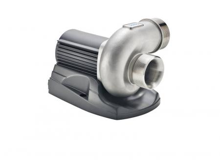 Pompa AquaMax Eco Titanium 300001