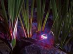 ProfiLux Garden LED RGB [4]