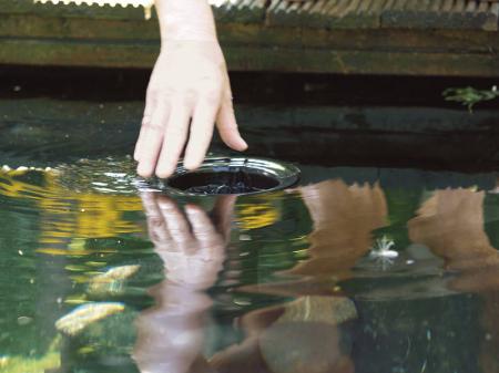 Skimmer AquaSkim 407