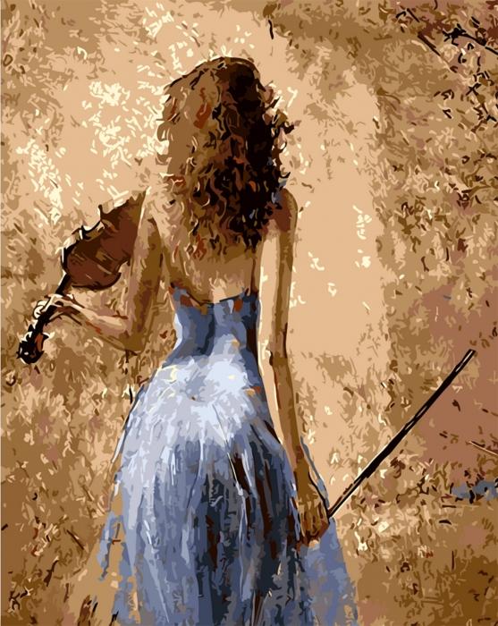 Picturi pe numere adulti - Fata cu vioara 0