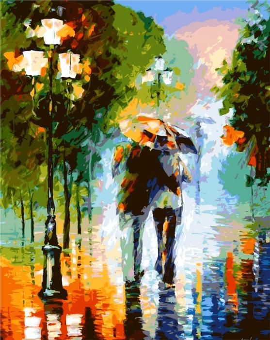 Picturi pe numere adulti - Impreuna in ploaie 0
