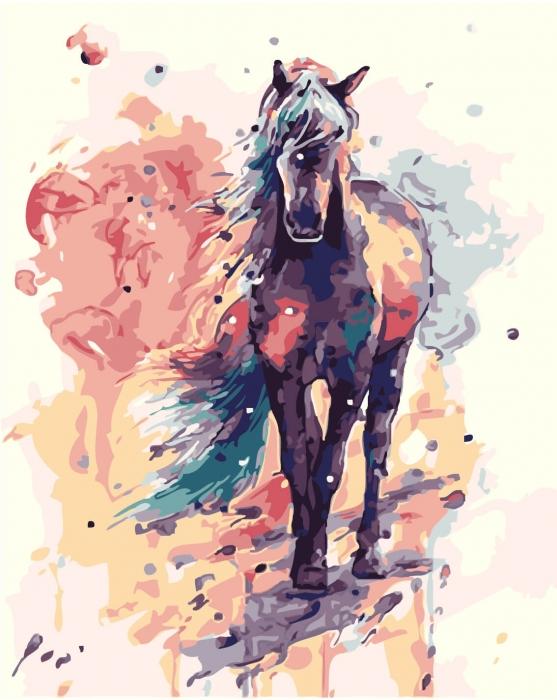 Picturi pe numere adulti - cal
