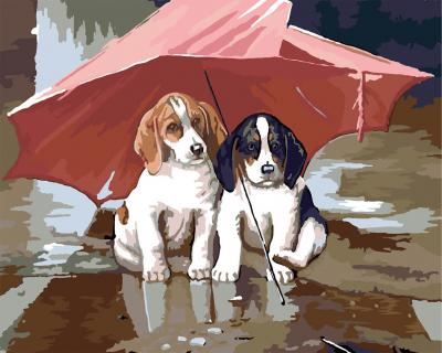 Picturi pe numere - Catei sub umbrela - (40 x 50 cm)0
