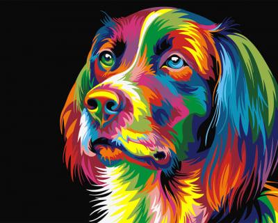 Picturi pe numere - Catel in culori - (40 x 50 cm)0