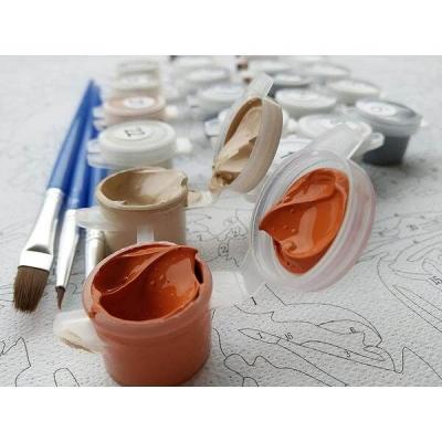 DIY - Picturi pe numere - (40 x 50 cm)