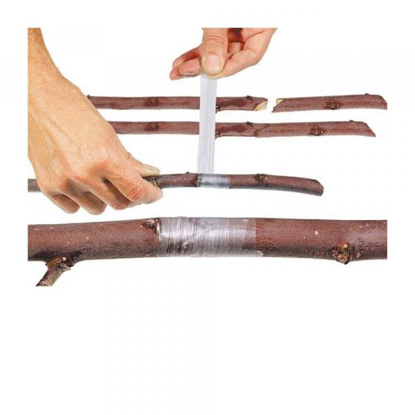 Banda pentru altoit copaci [0]