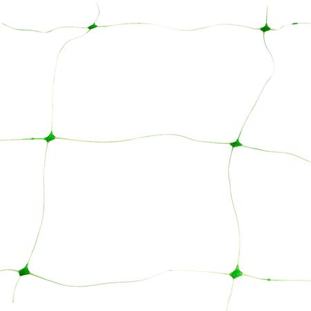 Plasa pentru castraveti 2 x 5 m [2]