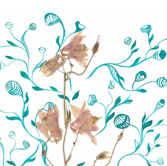 Floare Copac - ilustratie in tehnica mixta, plante presate, tus si vopsea acrilica 2