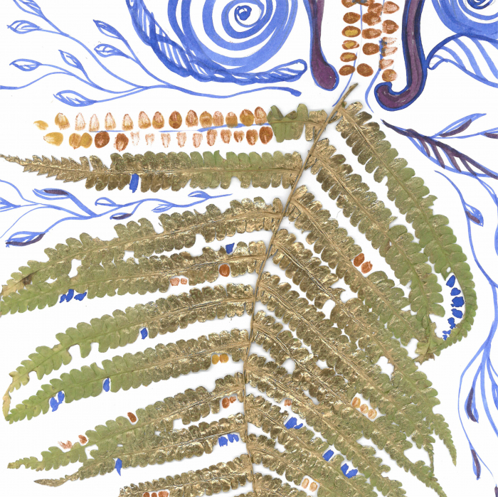 Feriga Barba - ilustratie in tehnica mixta, plante presate, tus si vopsea acrilica 1