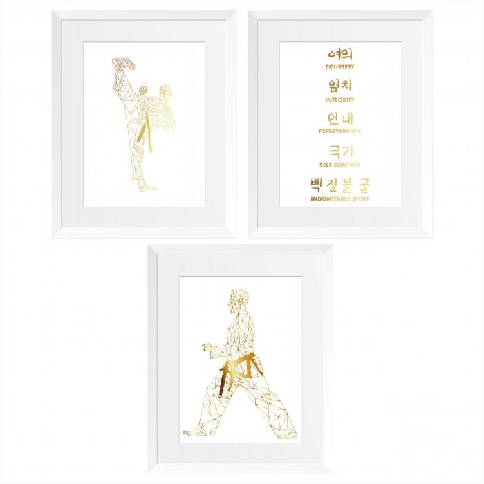 Set 3 tablouri, Arte Martiale, Taekwondo, cadou baiat 0