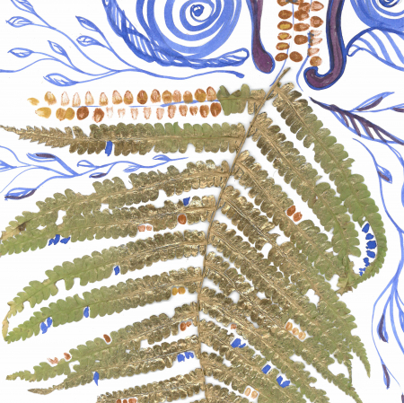 Feriga Barba - ilustratie in tehnica mixta, plante presate, tus si vopsea acrilica3