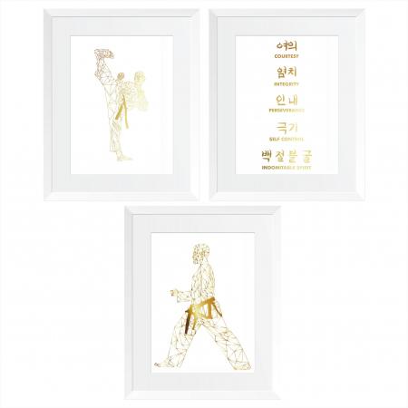 Arte Martiale, Taekwondo, Set 3 tablouri 24x30cm, cadou baiat0