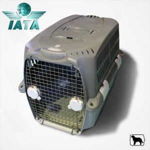Cusca transport Pet Cargo 800 0