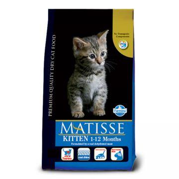 Matisse Kitten, 10Kg 0