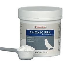 Oropharma Amoxicure 120 g 0