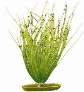 Planta artificiala Marina Hairgrass 20 cm 0