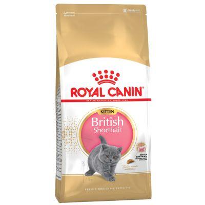 Royal Canin British Shorthair Kitten 2 kg 0